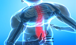 Join Our Back Injury Prevention Training